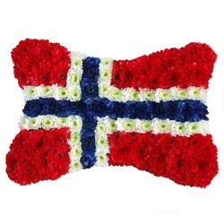 Norway Flag Funeral Tribute