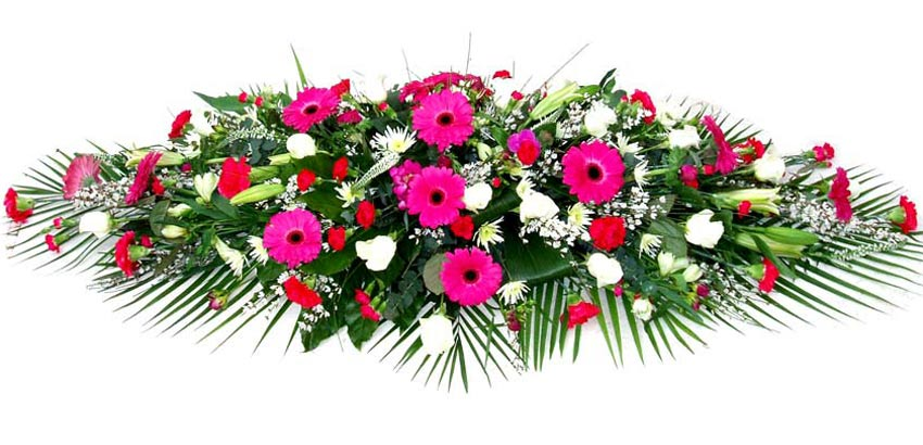 Funeral Flowers Funeral Coffin Spray - Cerise Gerbera