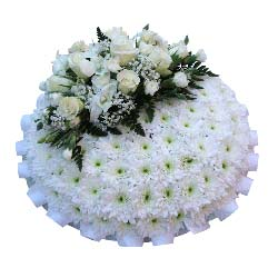 Funeral Posy Pad Pure White