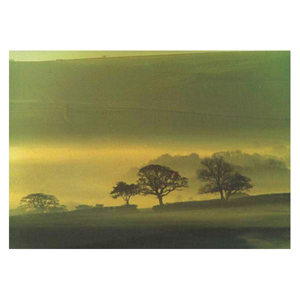 Photowrap Misty Morning Greeting Card