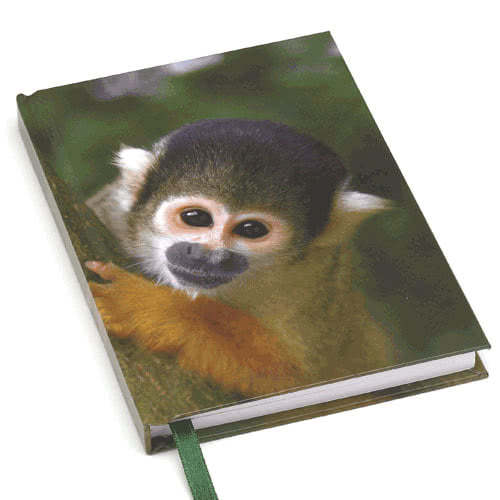 Catseye London Squirrel Monkey A6 Journal
