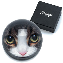 Tabby Cat Paperweight