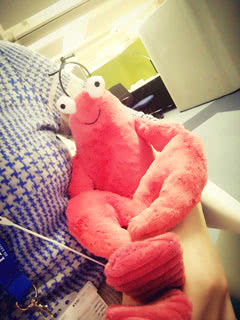 Jellycat Larry Lobster