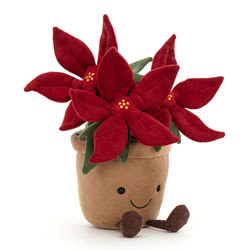 Amuseable Poinsettia