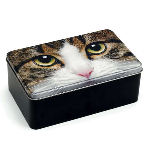 Tabby Cat Storage Tin