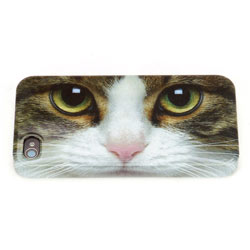 Tabby Cat iPhone Shell