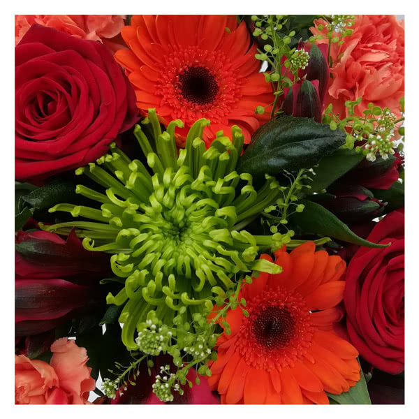 National Flower Delivery Florists Choice Red & Orange +