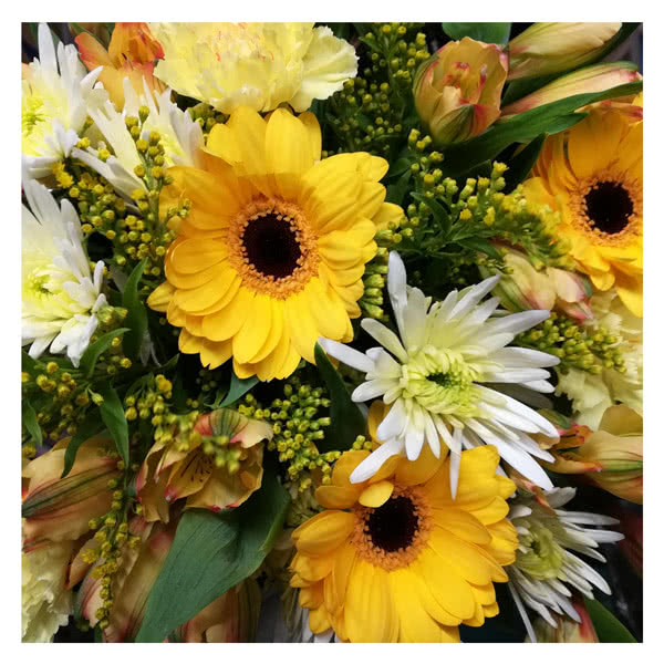 National Flower Delivery Florists Choice Yellow & Cream