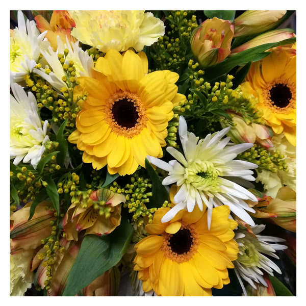 Flower Delivery Florists Choice Yellow & Cream