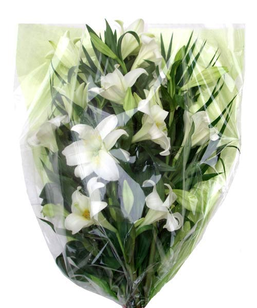 Flower Delivery Longiflorum Lily Bouquet