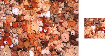Teddies Photowrap Wrapping Paper