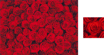 Red Roses Wrapping Paper - Photowrap